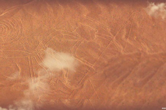 Full Day Islas Ballestas & Líneas de Nazca desde Ica
